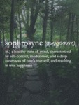 Sophrosyne - A Healthy State Of Mind...