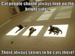 Cat People Should Always Look On The Bright Side..