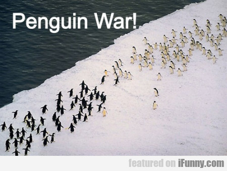 Penguin War!