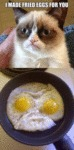 I Made Fried Eggs For You