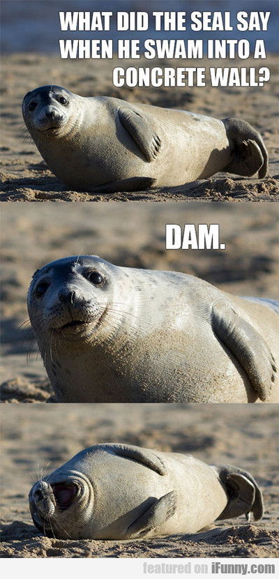 What Did The Seal Say When He Swam Into A...