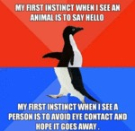 My First Instinct When I See...