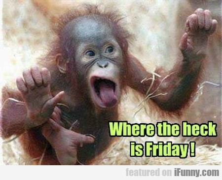 Where The Heck Is Friday