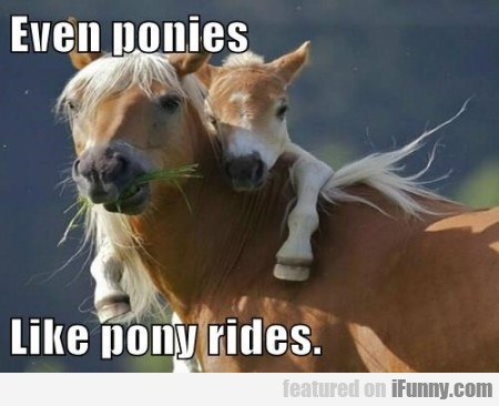 Even Ponies Like Pony Rides