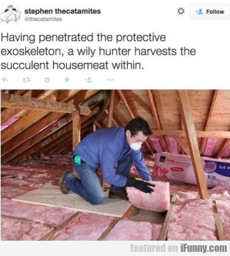 having penetrated the protective