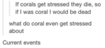 If Corals Get Stressed They