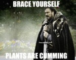 Brace Yourself, Plants Are Cumming...