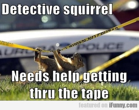detective squirrel needs help