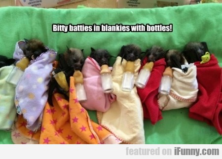 Bitty Batties In Blankies With Bottles.