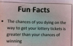 Fun Facts The Chances Of You Dying On The