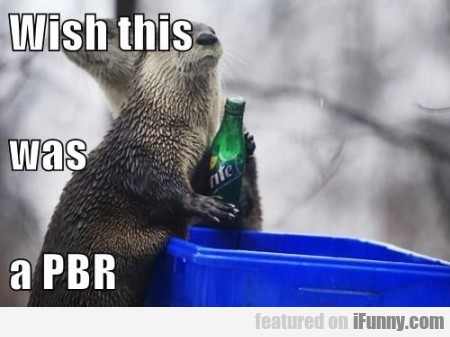 wish this was a pbr