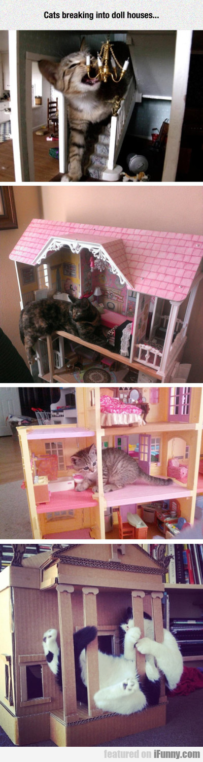 Cats Breaking Into Doll Houses...