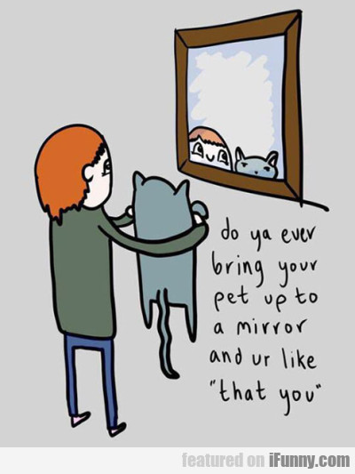 Do Ya Ever Bring Your Pet Up To A Mirror...