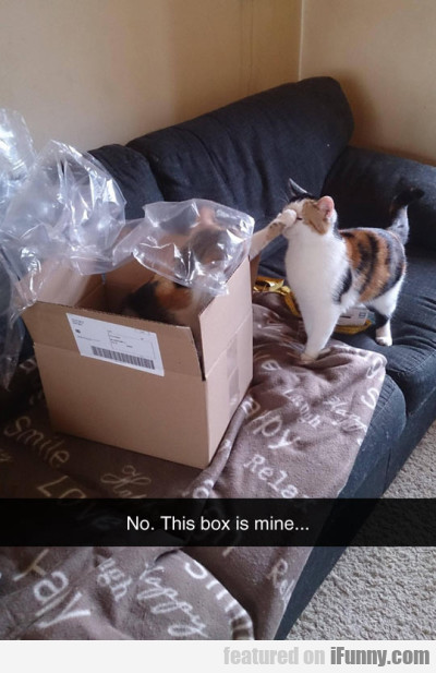 No! This Box Is Mine