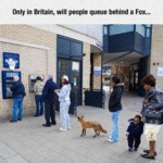 Only In Britain...