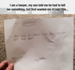 I Am A Lawyer, My Son Told Me