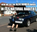 Here We See The Alfa Romeo Owner...