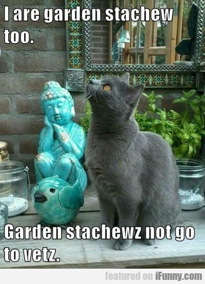 I Are Garden Stachew Too