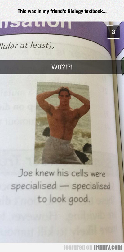 This Was In My Friend's Biology Book...