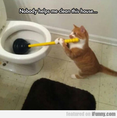 Nobody Helps Me Clean This House...