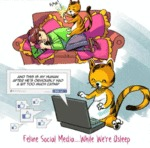 Feline Social Media While We're Asleep