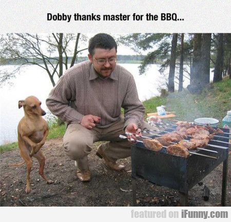 Dobby Thanks Master For The Bbq