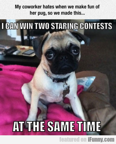 I Can Win Two Staring Contests...