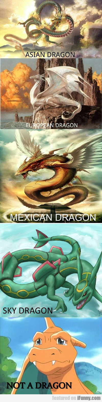 Asian Dragon...