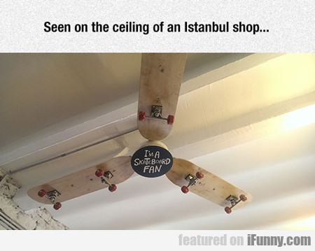 seen on the ceiling of an istanbul shop...