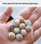 These Opals Look Like Mini Hatching Dragon Eggs...