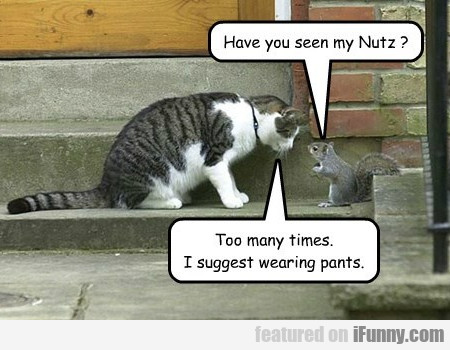 Have You Seen My Nutz?