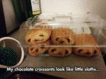 My Chocolate Croissants Look Like...
