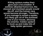 Killing Spiders Makes Their