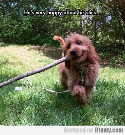 He S Very Happy About His Stick