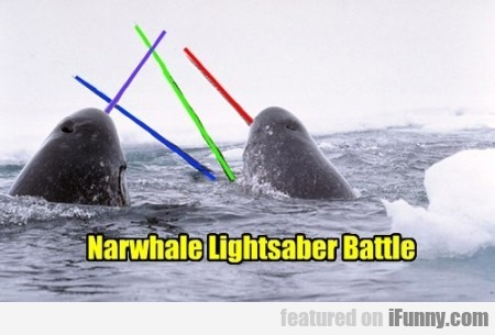 Narwhale Lightsaber Battle