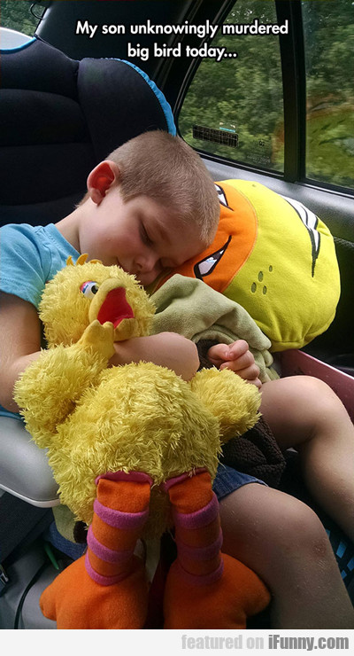my son unknowingly murdered big bird today...