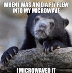 When I Was A Kid A Fly Flew Into My Microwave...