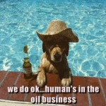 We Do Ok Humans In The Oil Business