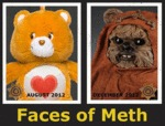 Faces Of Meth...