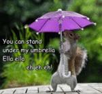 You Can Stand Under My Ubrella