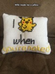 Wife Made A Pillow...