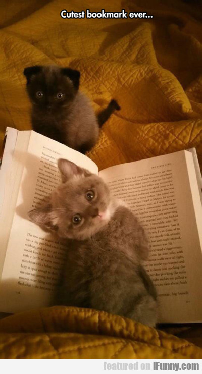 Cutest Bookmark Ever...