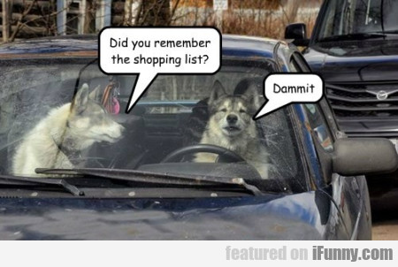 Did You Remember The Shopping List...