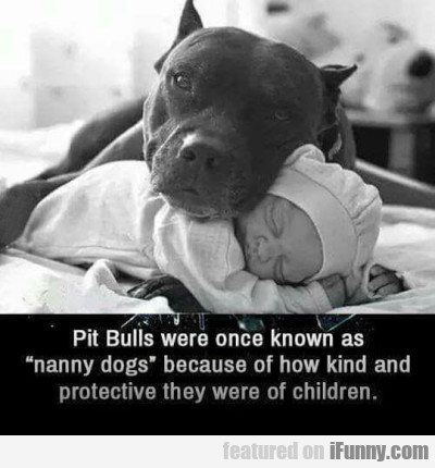 Pit Bulls Were Once Known As Nanny Dogs...