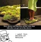 Moss Shower Mat That Lives Off The Water...