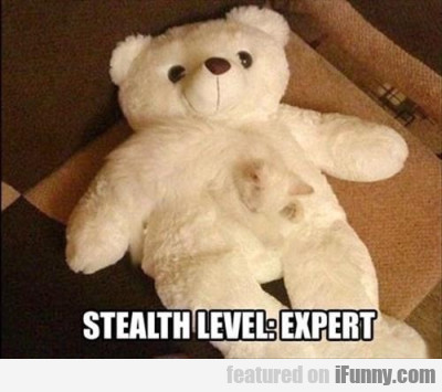 Stealth Level - Expert