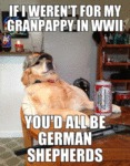 If I Weren't For My Granpappy In Wwii...
