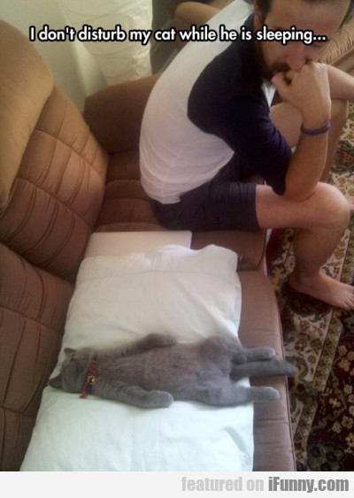 I don't disturb my cat while he is sleeping...