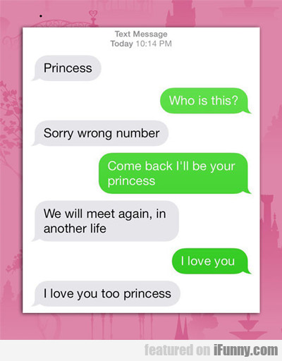 Princess, Who Is This...