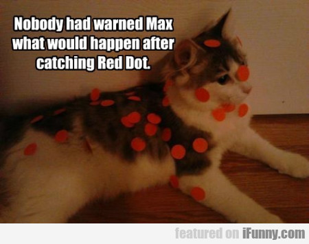 Nobody Had Warned Max What Would Happen After...